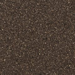 Speckled Bronze